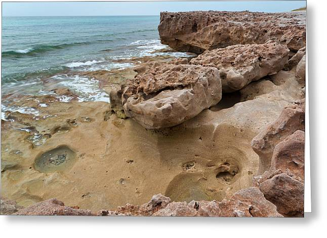 Looking Down From Above Blowing Rocks Preserve Greeting Card by Michelle Wiarda