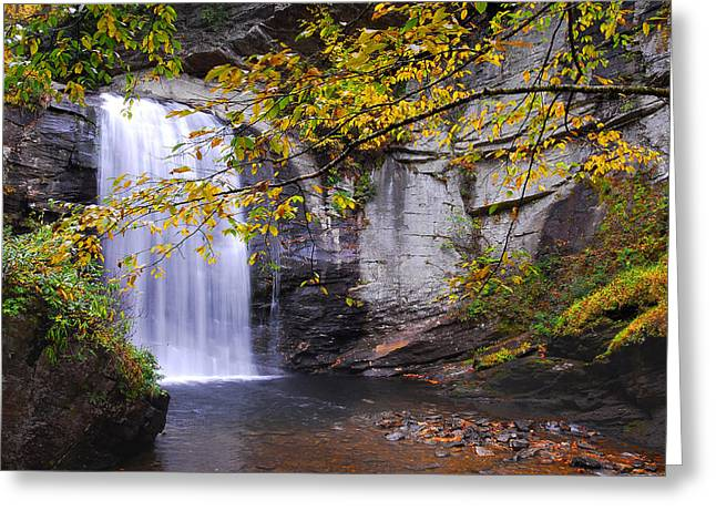 Looking Glass Falls Greeting Card by Alan Lenk