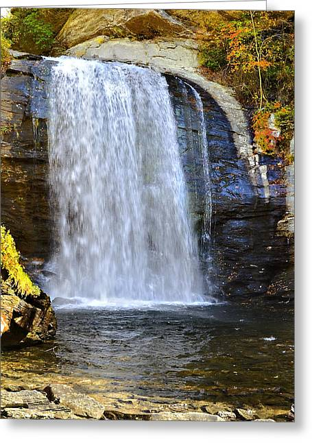 Looking Glass Falls Greeting Card by Susan Leggett