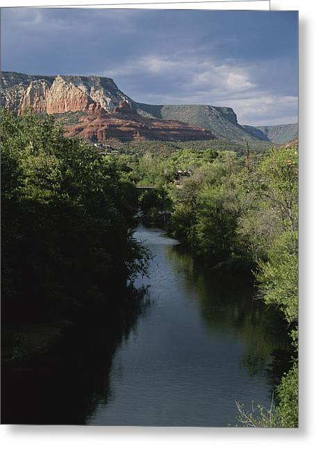 Looking Up Oak Creek At The Red Rocks Greeting Card by Todd Gipstein