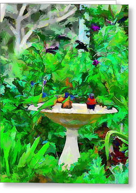 Lorikeets And Rosellas Greeting Card