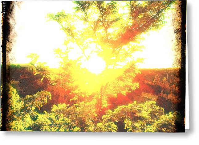 Greeting Card featuring the photograph Los Alamos Sunset by Paul Cutright