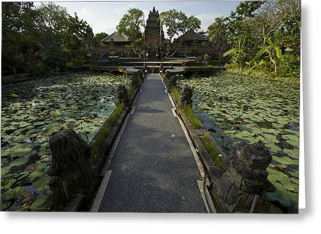 Lotus Pool At Pura Taman Swasti Temple Greeting Card by Tim Laman