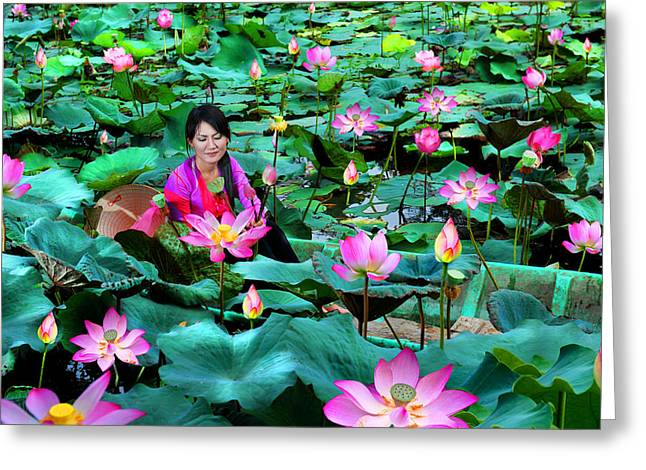 Lotus Season Greeting Card by Dung Ma
