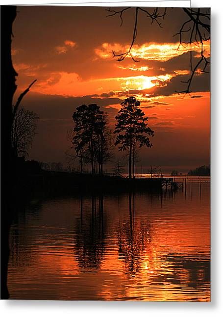 Lousiana Sunset Greeting Card by Dorothy Cunningham