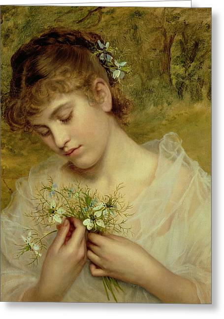 Love In A Mist Greeting Card by Sophie Anderson