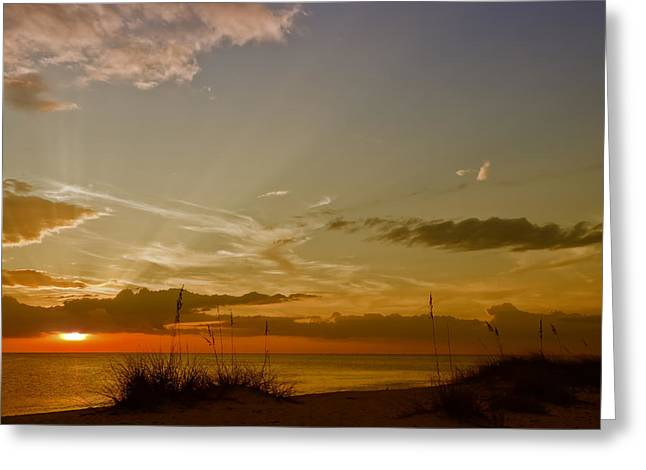 Lovely Sunset Greeting Card by Melanie Viola