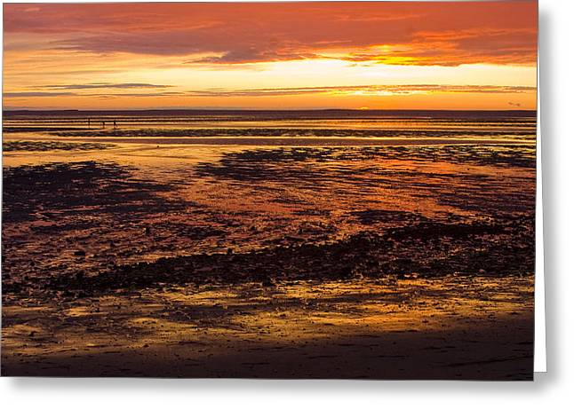 Greeting Card featuring the photograph Low Tide by Michael Friedman