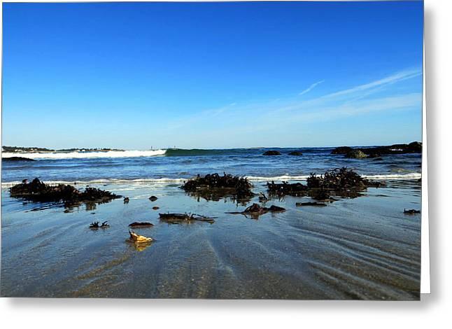 Low Tide On Long Beach Greeting Card by Pamela Turner