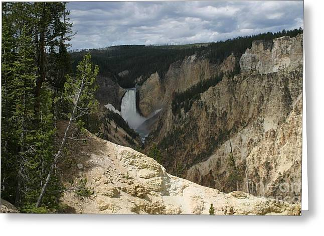 Lower Falls Of Yellowstone Greeting Card by Living Color Photography Lorraine Lynch