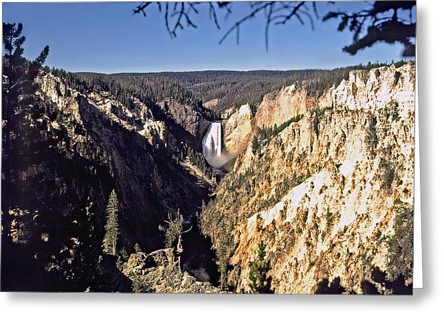 Lower Falls On The Yellowstone River Greeting Card by Rod Jones