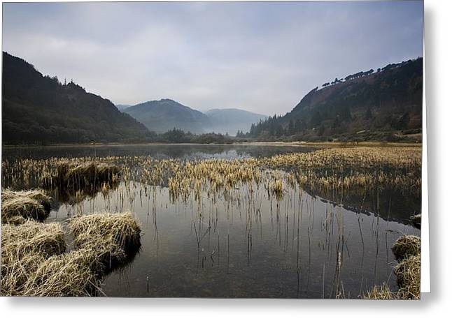 Lower Lake, Glendalough, County Greeting Card by Peter McCabe