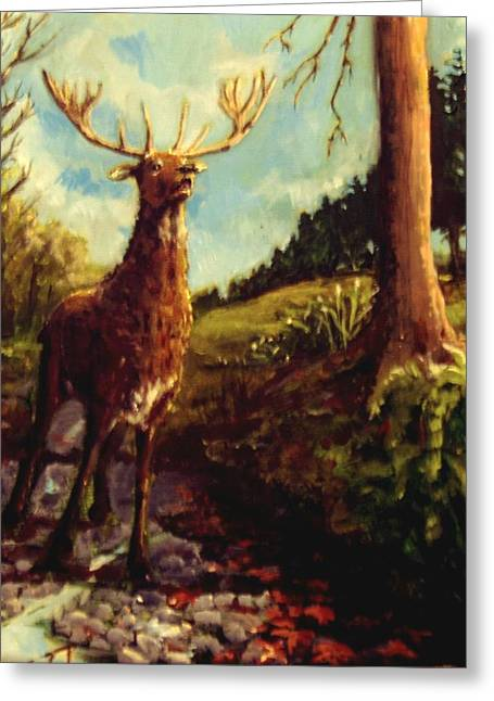 Lowland Stag Greeting Card by Graham Keith
