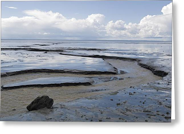 Lowtide In Cook Inlet At Potter Marsh Greeting Card