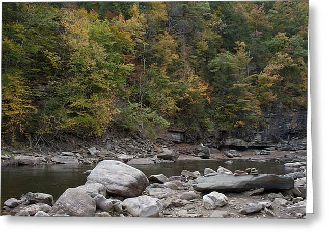 Loyalsock Creek Worlds End State Park Greeting Card