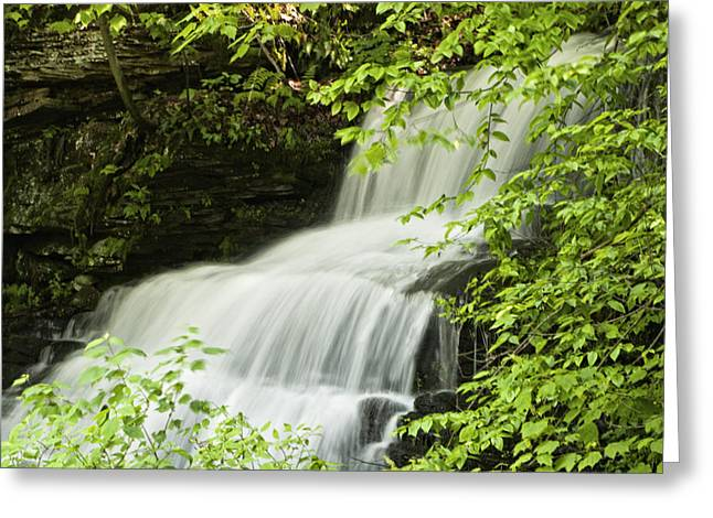 Loyalsock Waterfall Greeting Card