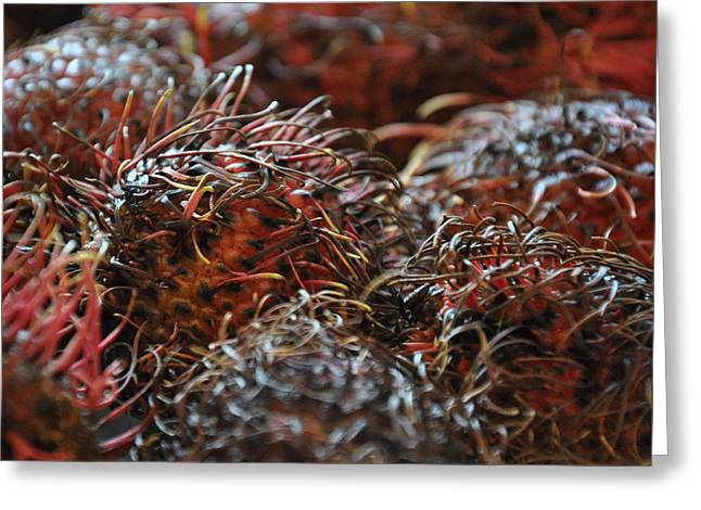 Lychee Fruit 2 Greeting Card by Frank Mari