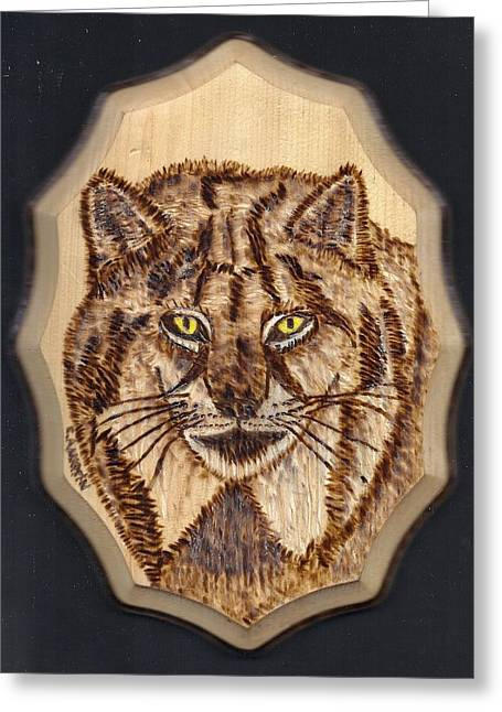 Lynx Greeting Card by Clarence Butch Martin