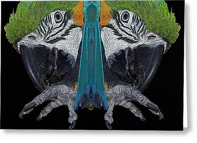 Macaw Greeting Card by Ernie Echols