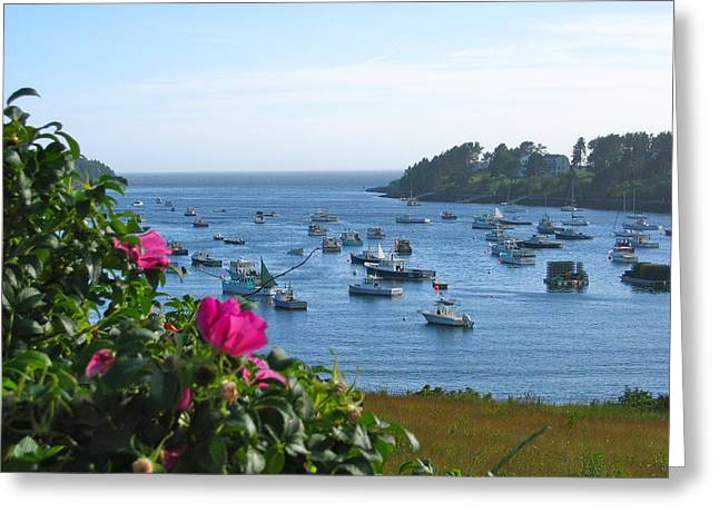 Mackerel Cove I Greeting Card