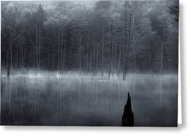 Greeting Card featuring the photograph Madame Sherri's Pond II by Tom Singleton