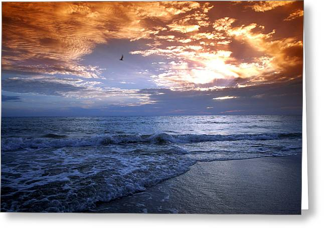 Madeira Fire Sky Greeting Card by David Yunker