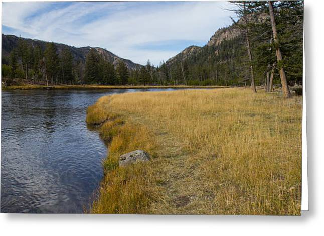 Madison River Banks Greeting Card by Twenty Two North Photography