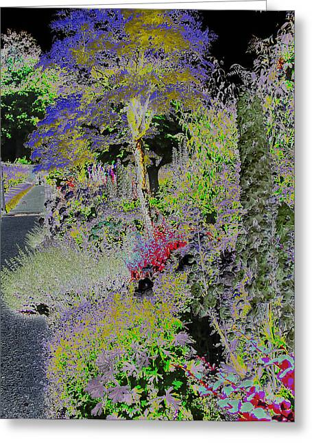 Magic Garden Greeting Card by Fred Whalley