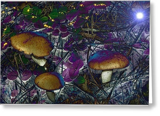 Magic Mushrooms Greeting Card by Barbara S Nickerson