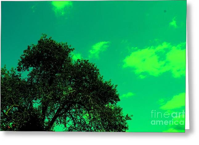 Magical Sky Greeting Card by Michael Grubb