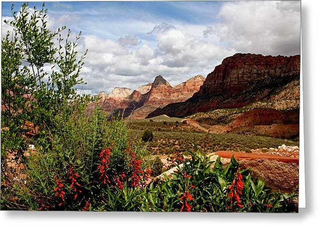 Magnificent Vistas In Zion Greeting Card