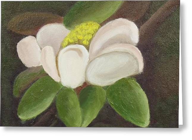 Magnificient Magnolia Greeting Card by Margaret Harmon