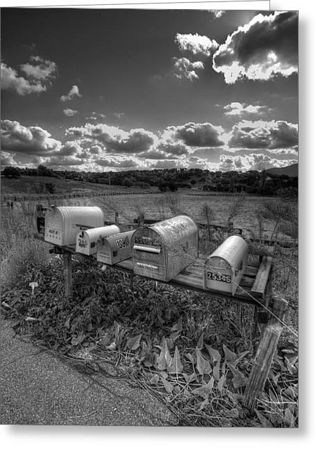 Mailboxes - Black  And White Greeting Card by Peter Tellone