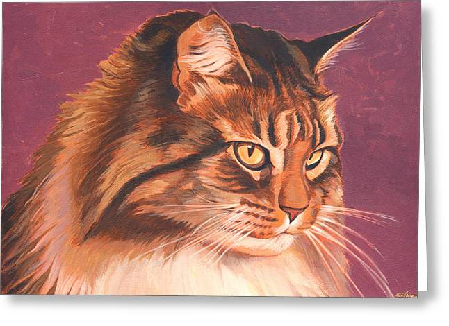 Maine Coon Portrait Greeting Card by Shawn Shea