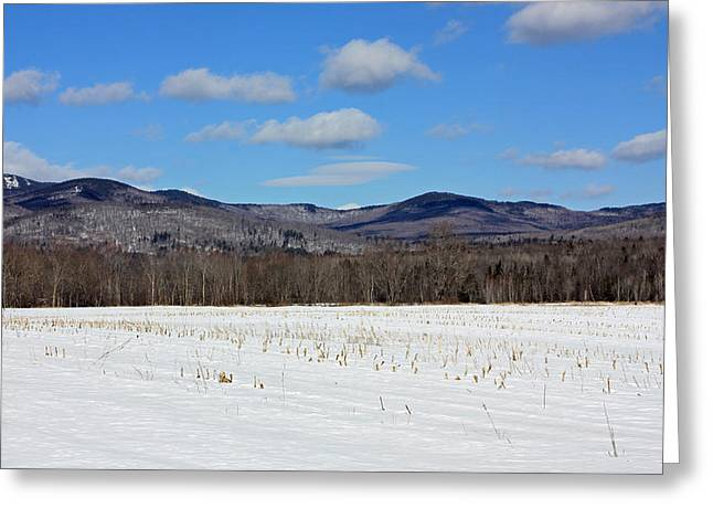 Maine Mountains Greeting Card by Becca Brann