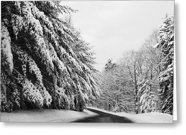 Maine Winter Backroad Greeting Card by Christy Bruna