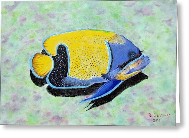 Majestic Angelfish Greeting Card by Riley Geddings
