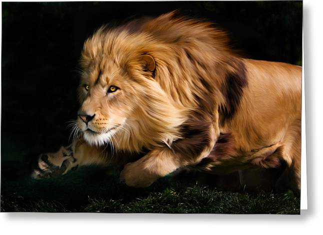 Male Lion Hunting Greeting Card by Julie L Hoddinott