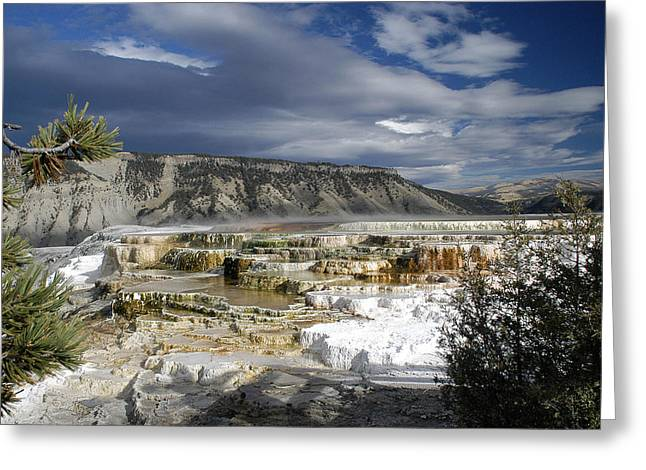 Greeting Card featuring the photograph Mammoth Hot Springs by Geraldine Alexander
