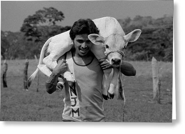 Man With Calf Greeting Card by Michael Mogensen