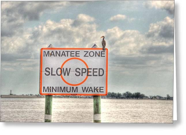Manatee Zone Greeting Card by Barry R Jones Jr