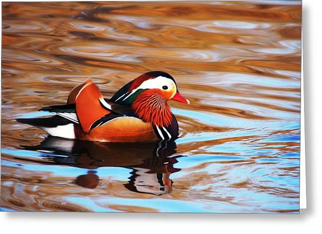 Mandarin Duck Greeting Card by Juan  Cruz