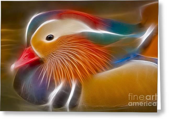 Mandarin Glow Greeting Card by Susan Candelario