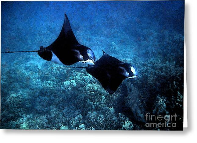 Greeting Card featuring the photograph Mantas In Synch by Bette Phelan