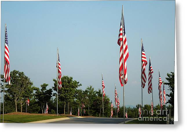 Many American Flags Greeting Card by Renee Trenholm