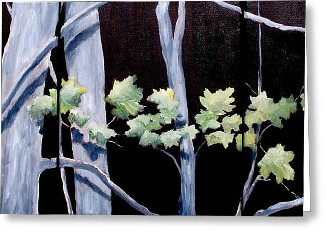 Maples In Moonlight Greeting Card
