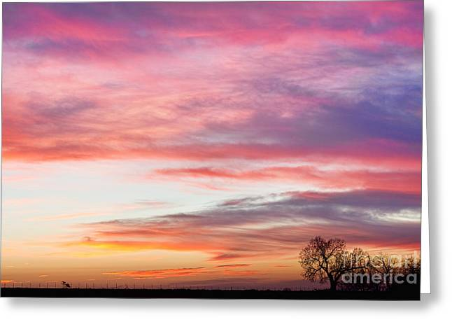 March Countryside Sunrise  Greeting Card by James BO  Insogna