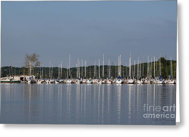 Greeting Card featuring the photograph Marina by Todd Blanchard