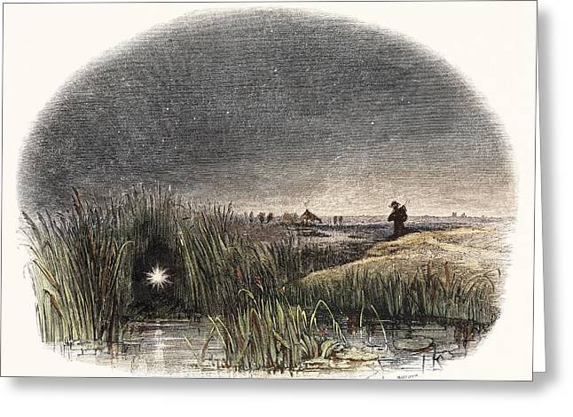 Marsh Light Greeting Card by