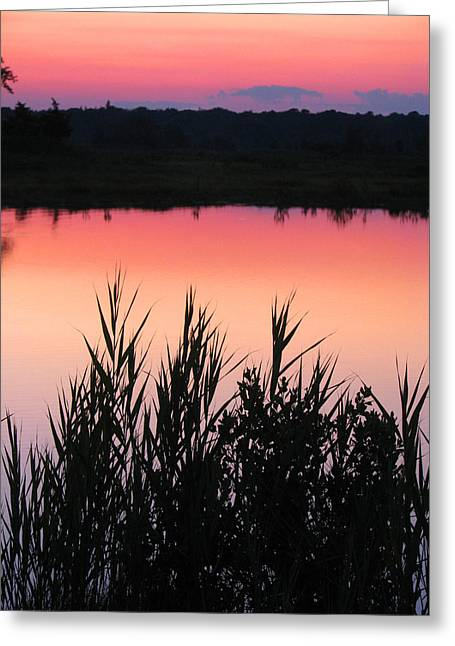 Greeting Card featuring the photograph Marsh Sunset by Clara Sue Beym